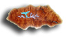 Beautiful and exquisite Manzanita Root Burl barrette! Sorry; SOLD OUT