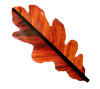 Beautiful and exquisite Oak Leaf Cocobolo barrette! Sorry; SOLD OUT